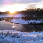 Haderis i vinterklæder dec 2012